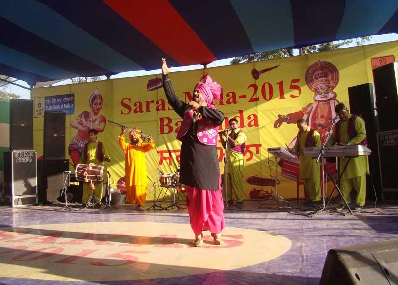 Saras Mela 2015 Images