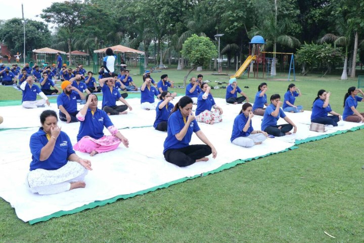 Verka Celebrates International Yoga Day