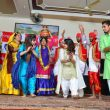 Cultural event held by Creative Zone Malerkotla