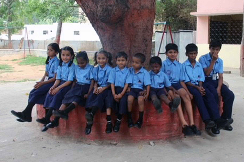TOMS Distributes Akshaya Patra Beneficiaries