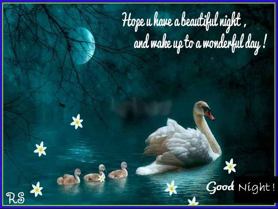 Good Night Wishes with Pictures