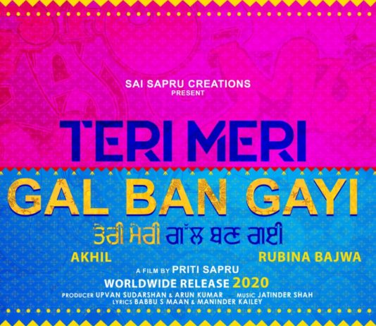 New Punjabi Film 'Teri Meri Gal Ban Gayi' to be directed by Priti Sapru