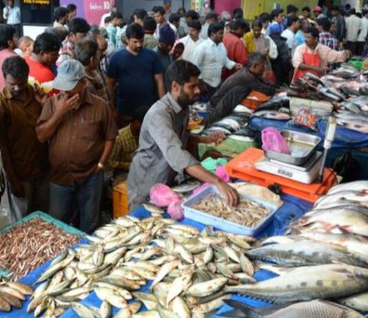 MCC to conduct open auction of Fish Market sector 41 on August 26