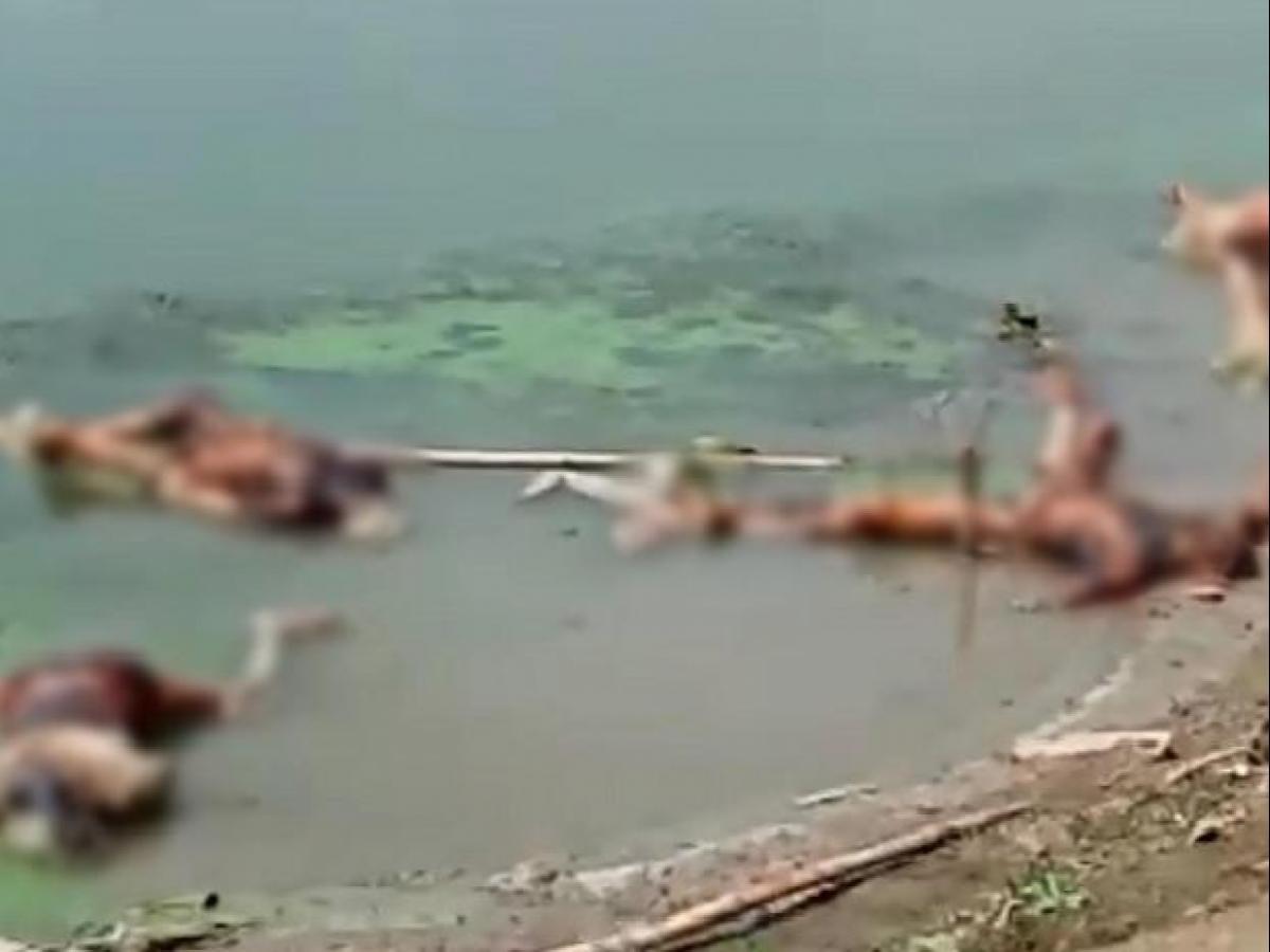 Bengal ups Ganga vigil to block floating bodies