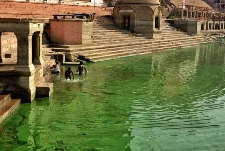 Ganga goes green in Varanasi
