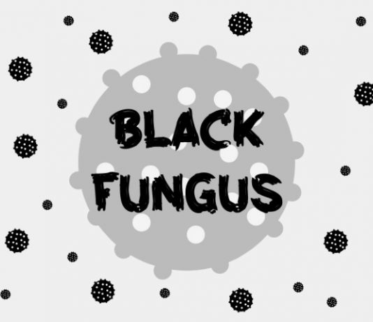 Colorful Fungus in Black and White Life