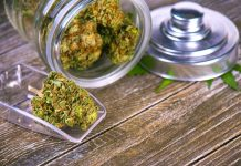 What Are the Top 5 Weed Strains For Severe Anxiety